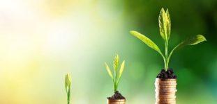 En İyi Yatırım Aracı 2020 Nedir?